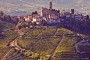Alba wijnreis