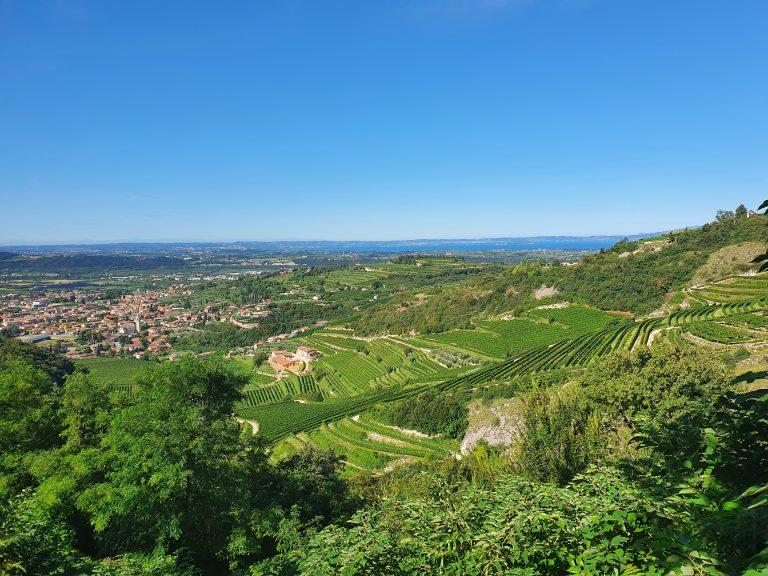 Valpolicella wijngebied